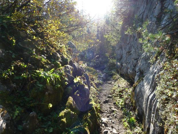 Verwünschener Weg durch das Berchtesgadener Land. (Alle Rechte vorbehalten)